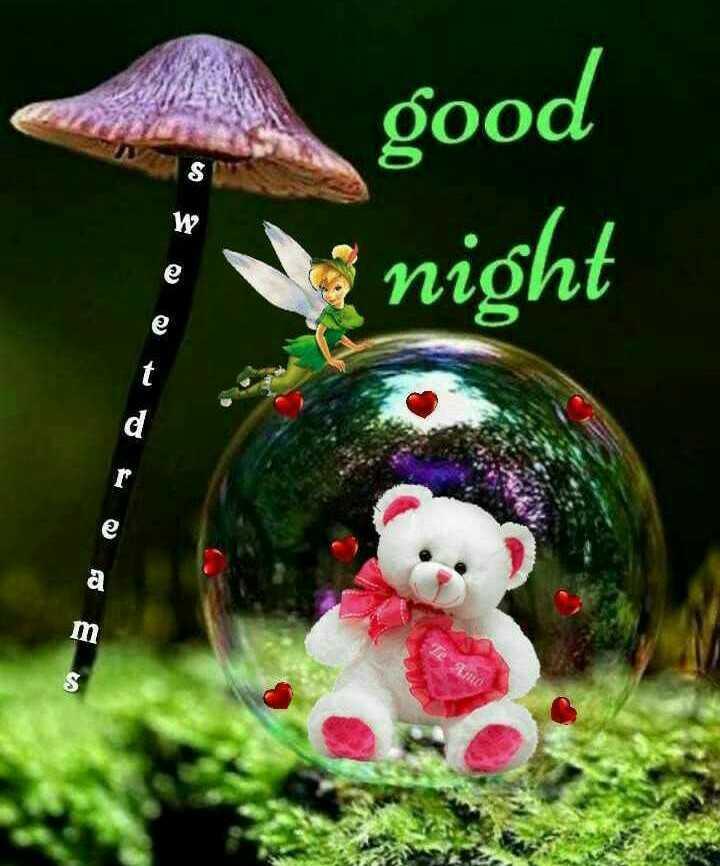 👋విషెస్ స్టేటస్ - good night - ShareChat