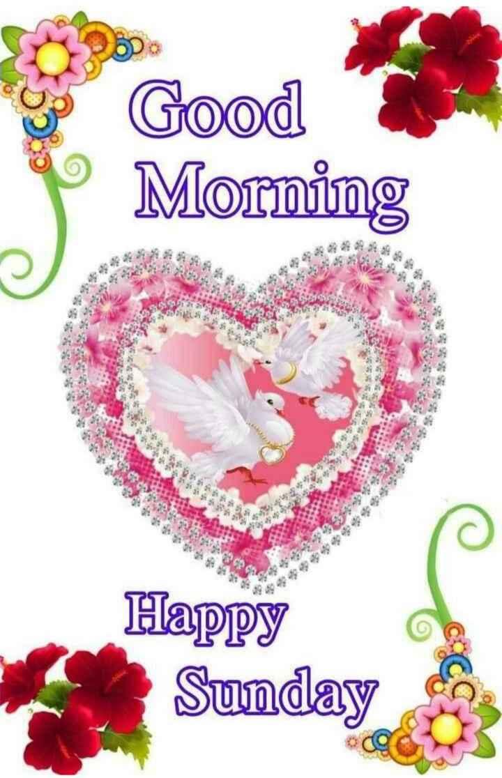 👋విషెస్ స్టేటస్ - o Good P Morming 8929 25935639 30 S2 9386 99999 GARCIA & & & W33333 $ 43 Happy Sunday - ShareChat