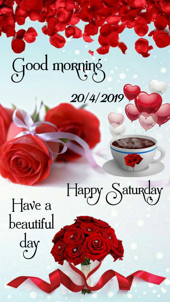 👋విషెస్ స్టేటస్ - Good morning 20 / 4 / 2019 Happy Saturday Have a beautiful - ShareChat