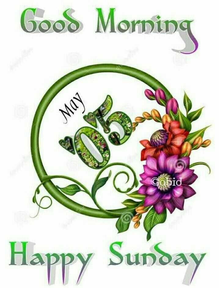 👋విషెస్ స్టేటస్ - Good Morning MOV Cobid , Happy Sunday - ShareChat