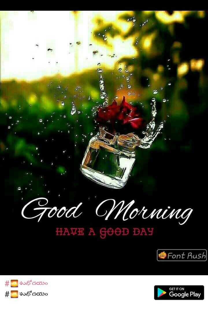 💐విషెస్ GIF - Good Morning HAVE A GOOD DAY Font Rush # ves ao శుభోదయం GET IT ON Google Play - ShareChat