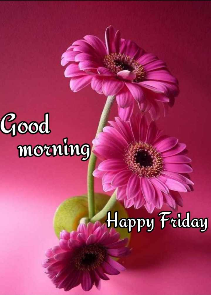 💐విషెస్ GIF - Good morning Happy Friday - ShareChat