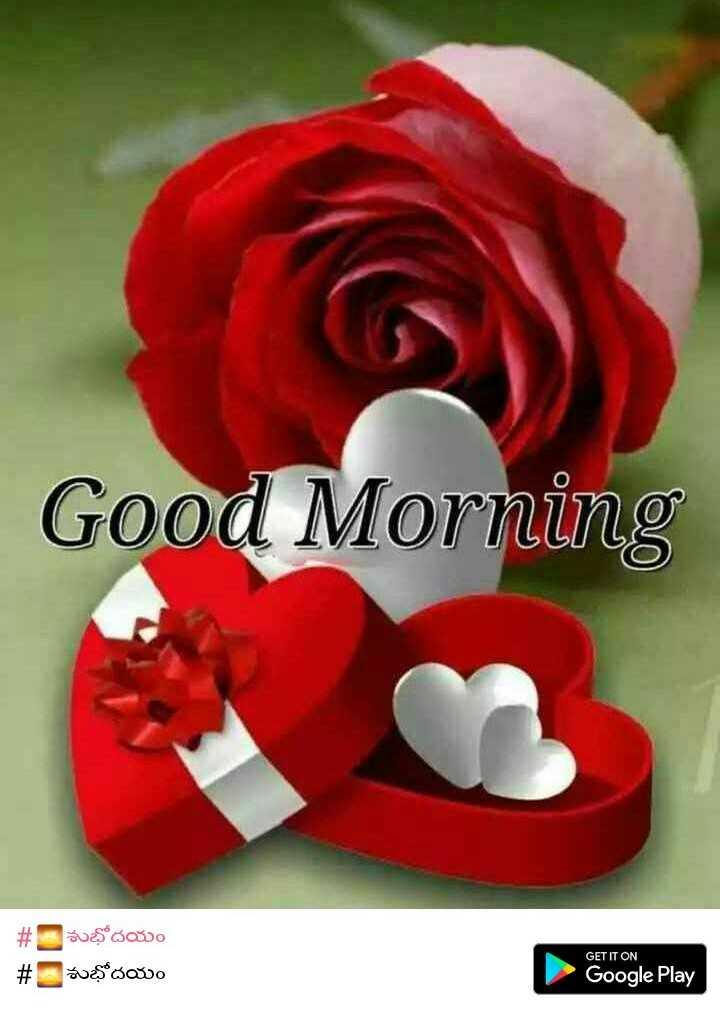 💐విషెస్ GIF - Good Morning # # $ * 30000 sus doo GET IT ON Google Play - ShareChat