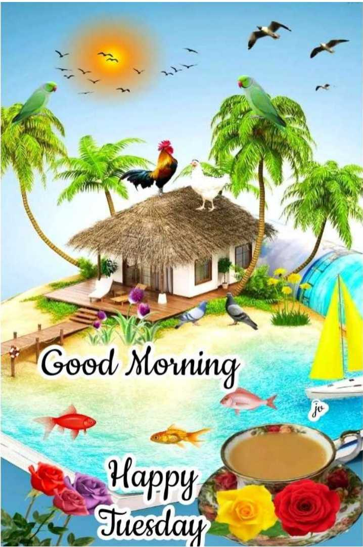 💐విషెస్ GIF - Good Morning du Happy Tuesday - ShareChat