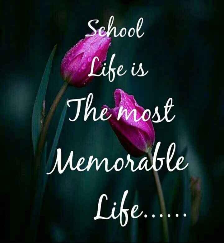 😍వేసవి సెలవులు - School Life is The most Memorable Life . . . . . - ShareChat