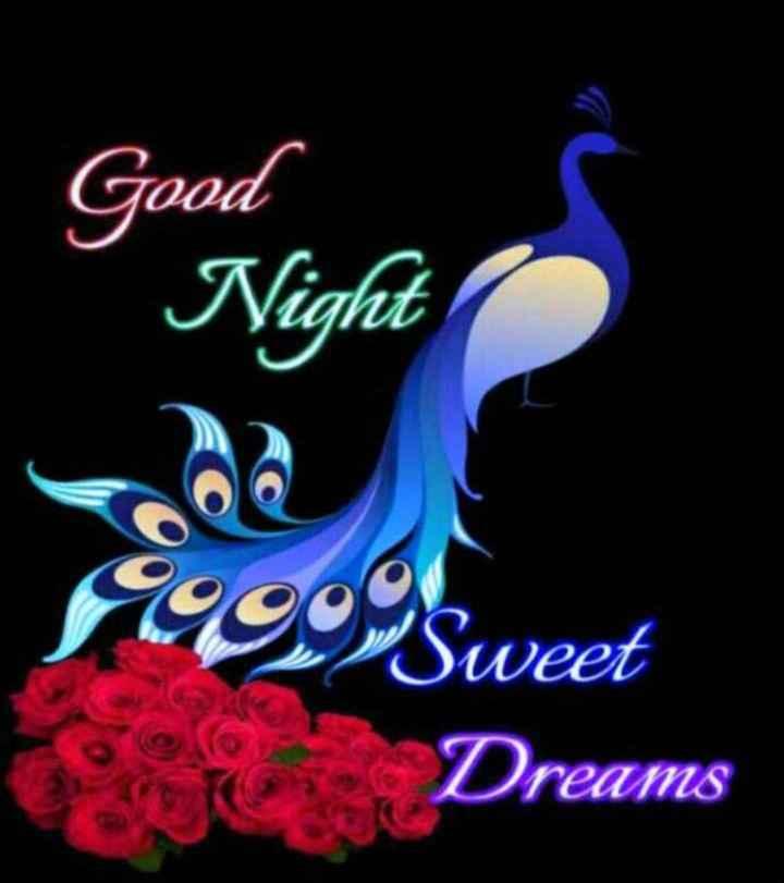 😴శుభరాత్రి - Good Night 1999 Sweet Dreams - ShareChat