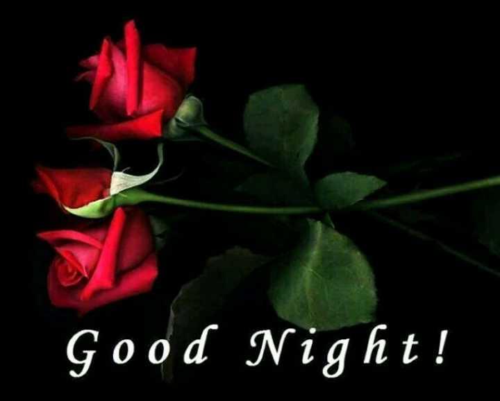 😴శుభరాత్రి - Good Night ! - ShareChat