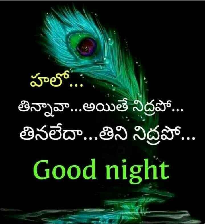 😴శుభరాత్రి - హలో . . . , తిన్నావా . . . అయితే నిద్రపో . . తినలేదా . . . తిని నిద్రపో . . . Good night - ShareChat