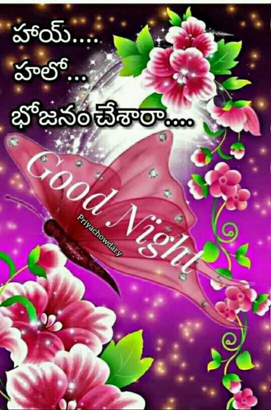 😴శుభరాత్రి - ' హాయ్ . . . . ఈ హలో . భోజనం చేశారా * Good Night Priyachowdary - ShareChat