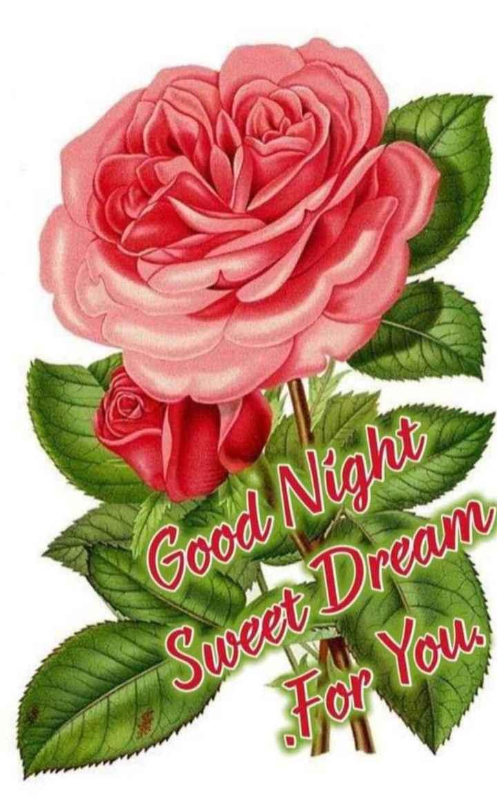 😴శుభరాత్రి - Good Night Sweet Dream For you , - ShareChat