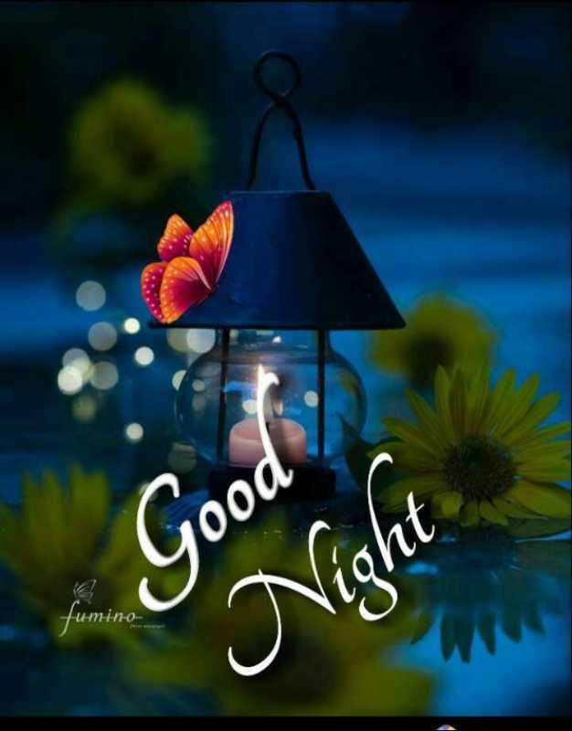 😴శుభరాత్రి - Good Night Heino - ShareChat