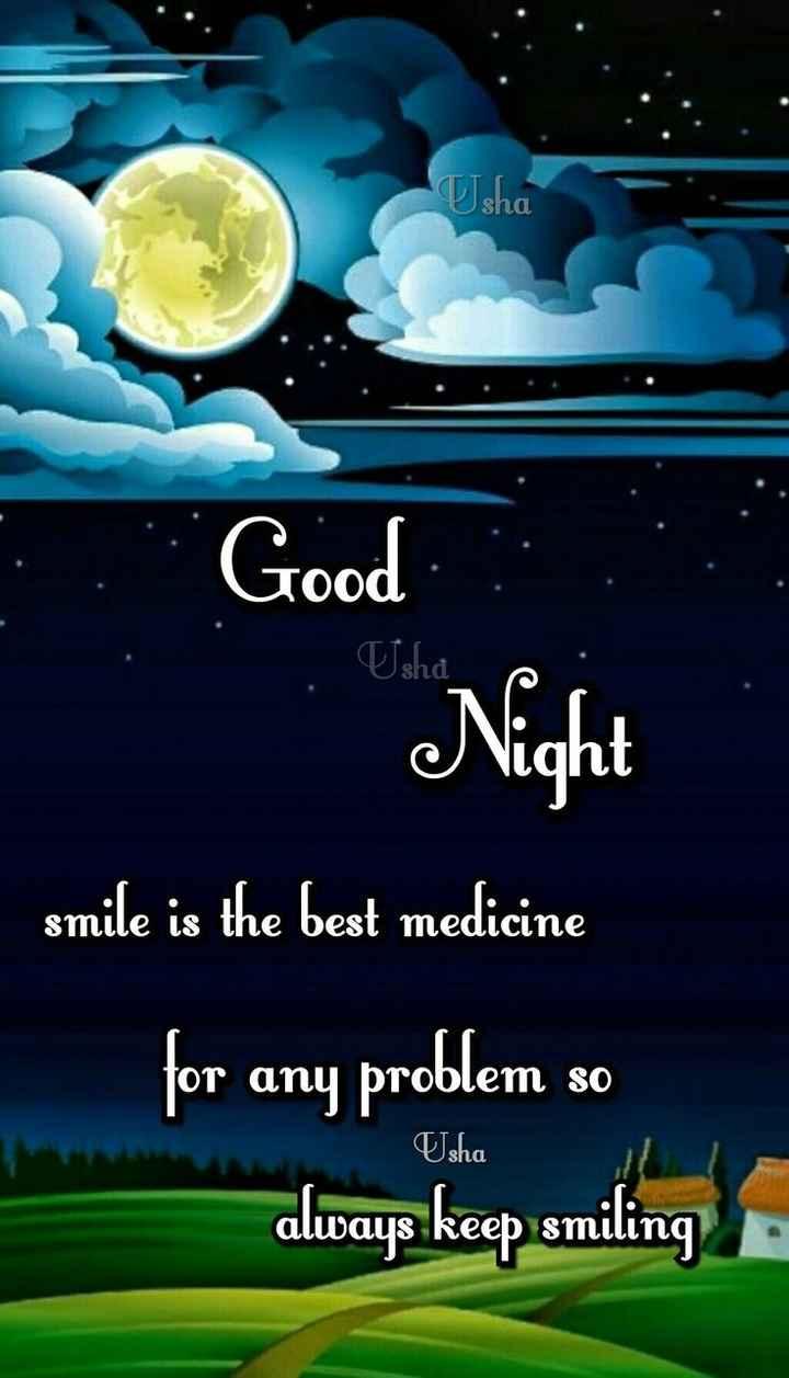 😴శుభరాత్రి - TJsha Good Night smile is the best medicine for any problem so always keep smiling Usha - ShareChat