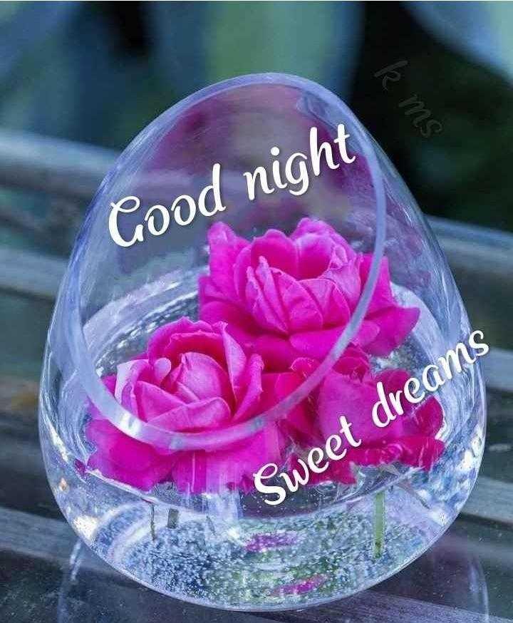 😴శుభరాత్రి - k MS Good night Sweet dreams - ShareChat