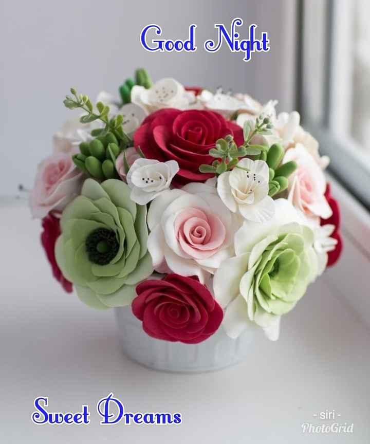 😴శుభరాత్రి - Good Night Sweet Dreams - Siri - PhotoGrid - ShareChat