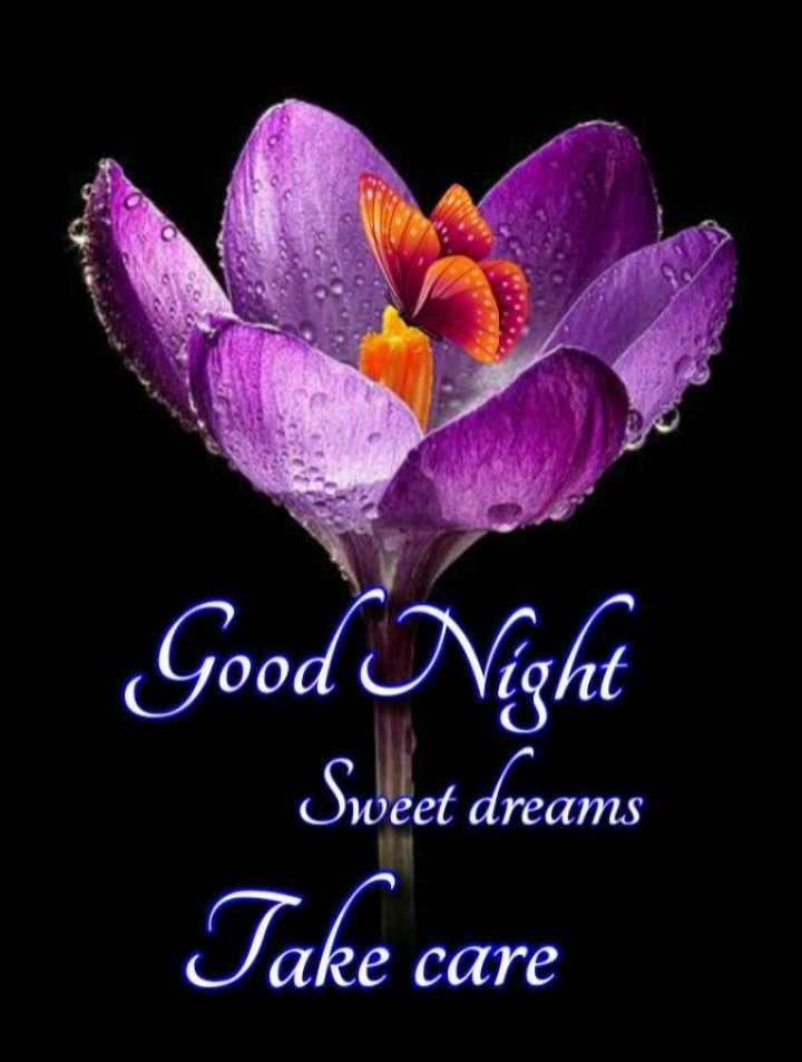 😴శుభరాత్రి - yood Good Night Sweet dreams Take care - ShareChat