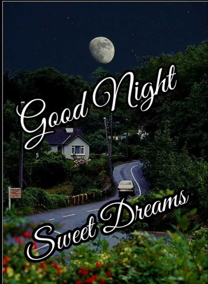 😴శుభరాత్రి - Good Night weet Dreams - ShareChat