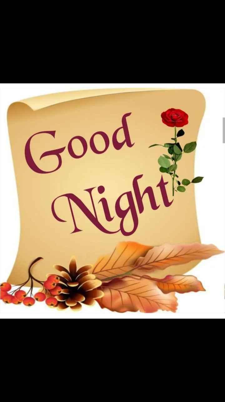 😴శుభరాత్రి - Good & Night . . - ShareChat