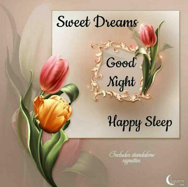 😴శుభరాత్రి - Sweet Dreams Good Night Happy Sleep Includes standalone vignettes beam - ShareChat
