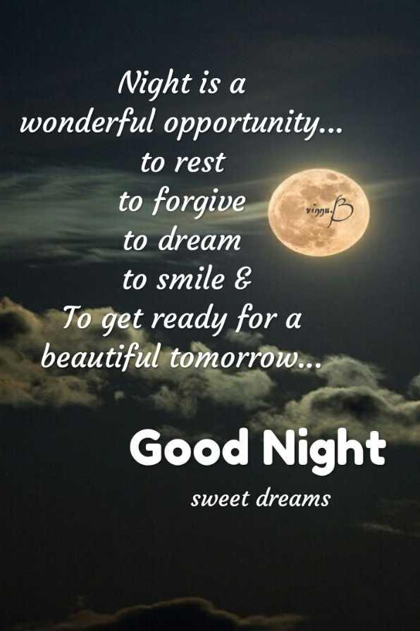 😴శుభరాత్రి - Vingu . Night is a wonderful opportunity . . . to rest to forgive to dream to smile & To get ready for a beautiful tomorrow . . . Good Night sweet dreams - ShareChat