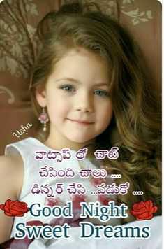 😴శుభరాత్రి - Usha వాట్సాప్ లో చాట్ చేసింది చాలు . . డిన్నర్ చేసి . . . పడుకో . . Good Night Sweet Dreams - ShareChat