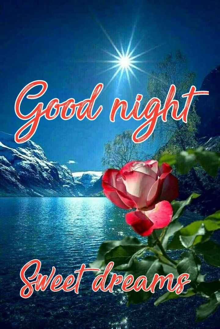 😴శుభరాత్రి - Good night Sweet Wreams - ShareChat