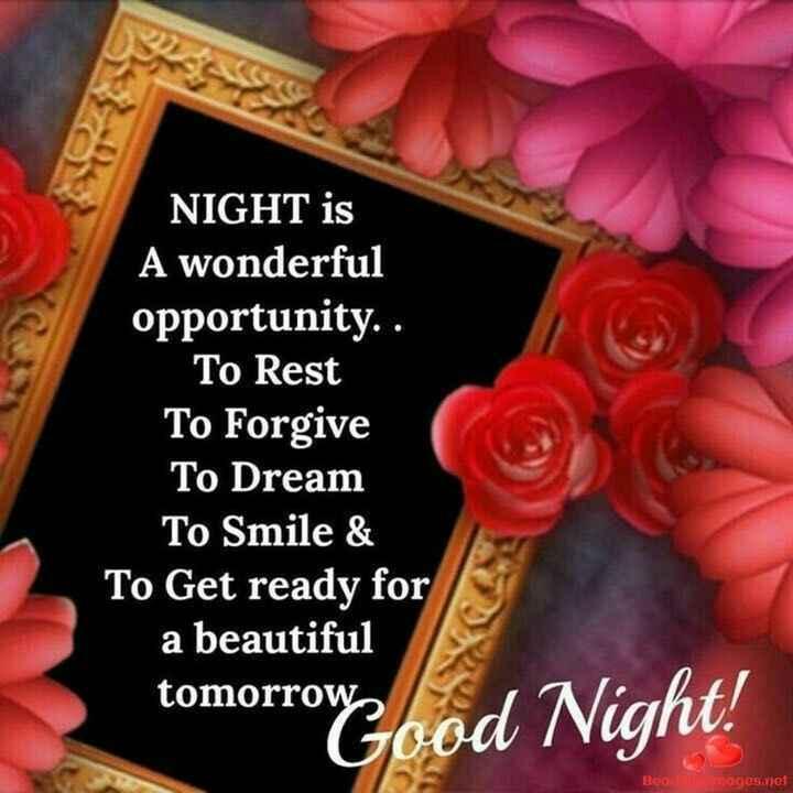 😴శుభరాత్రి - NIGHT is A wonderful opportunity . . To Rest To Forgive To Dream To Smile & To Get ready for a beautiful tomorrow , Good Night ! Beautages . net - ShareChat