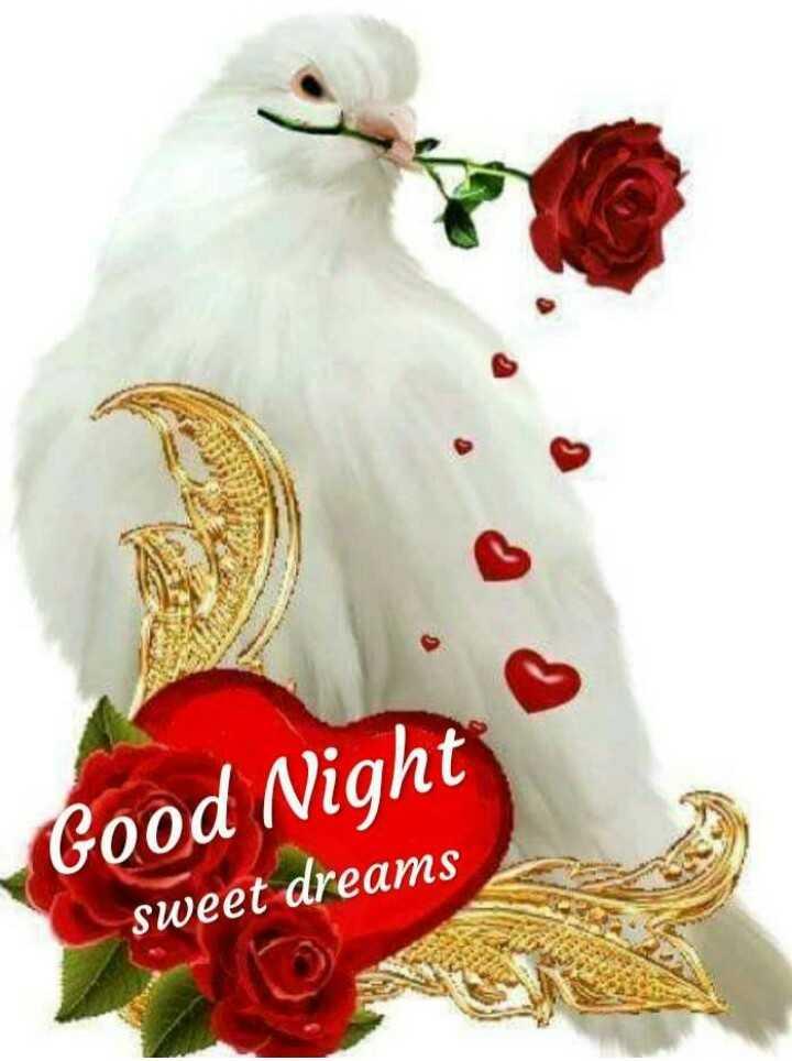 శుభ వార్త📣 - Good Night sweet dreams - ShareChat