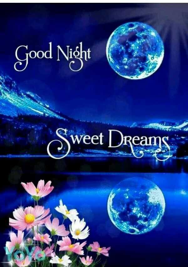 🙏శుభాకాంక్షలు - Good Night C TOOO . . . Sweet Dreams - ShareChat