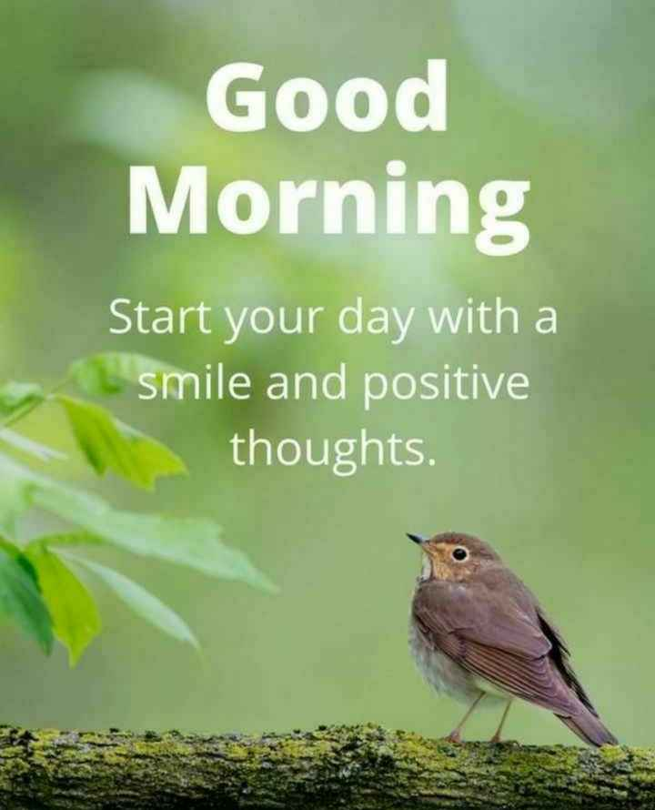 🙏శుభాకాంక్షలు - Good Morning Start your day with a smile and positive thoughts . - ShareChat