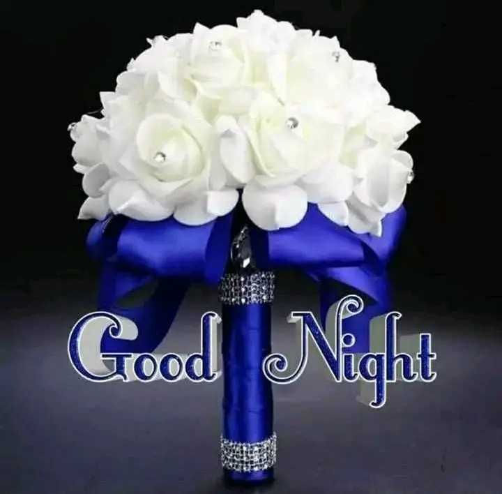 🙏శుభాకాంక్షలు - Good Night - ShareChat