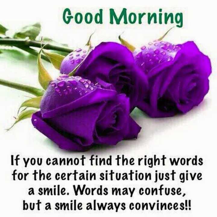 🙏శుభాకాంక్షలు - Good Morning If you cannot find the right words for the certain situation just give a smile . Words may confuse , but a smile always convinces ! ! - ShareChat