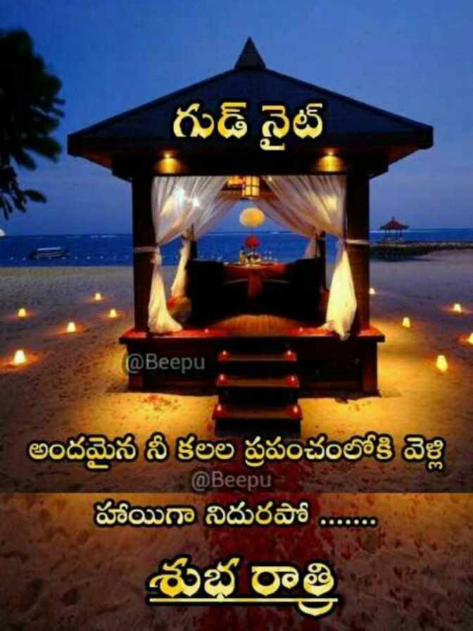 🙏శుభాకాంక్షలు - గుడ్ నైట్ ( @ Beepu అందమైన నీ కలల ప్రపంచంలోకి వెళ్లి @ Beepu హాయిగా నిదురపో . . . . శుభ రాత్రి - ShareChat