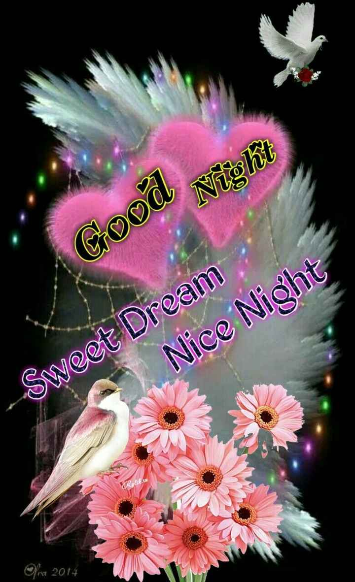 🙏శుభాకాంక్షలు - Night Good - Sweet Dream Nice Night fra 2014 - ShareChat