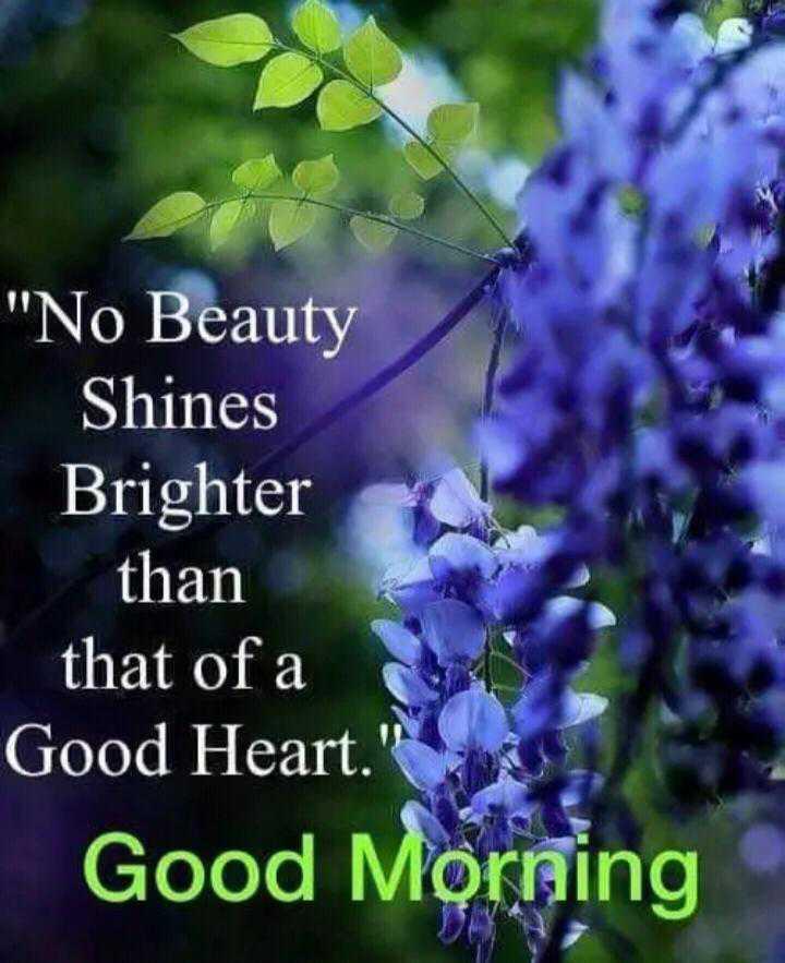 🙏శుభాకాంక్షలు - No Beauty Shines Brighter than that of a Good Heart . Good Morning - ShareChat