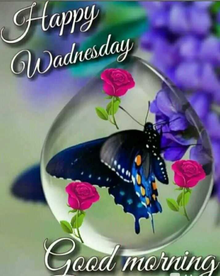 శుభొదయమ్ - Happy Wadnesday Good morning - ShareChat