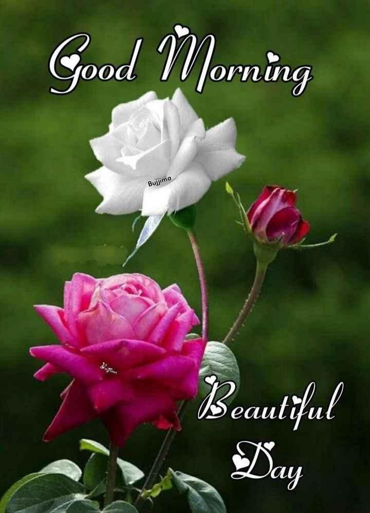 🌅శుభోదయం - Good Morning Bujjima Beautiful Day - ShareChat