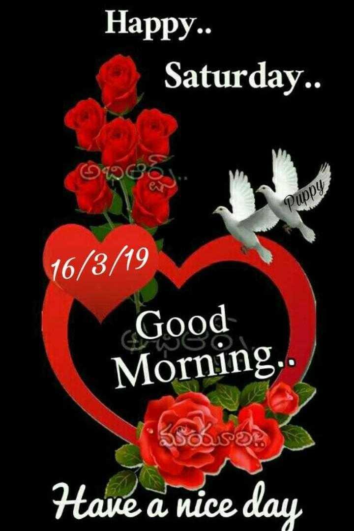🌅శుభోదయం - Happy . . Saturday . . 99965 Puppy 16 / 3 / 19 Good Morning . . Have a nice day - ShareChat