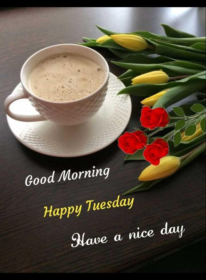 🌅శుభోదయం - Good Morning Happy Tuesday Have a nice day - ShareChat
