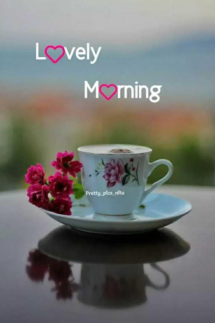 🌅శుభోదయం - Lovely Morning Pretty _ pics _ nitu - ShareChat