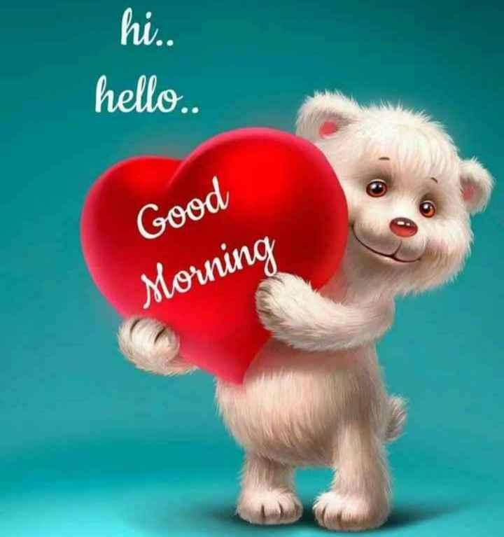 🌅శుభోదయం - hi . . hello . Good Morning - ShareChat