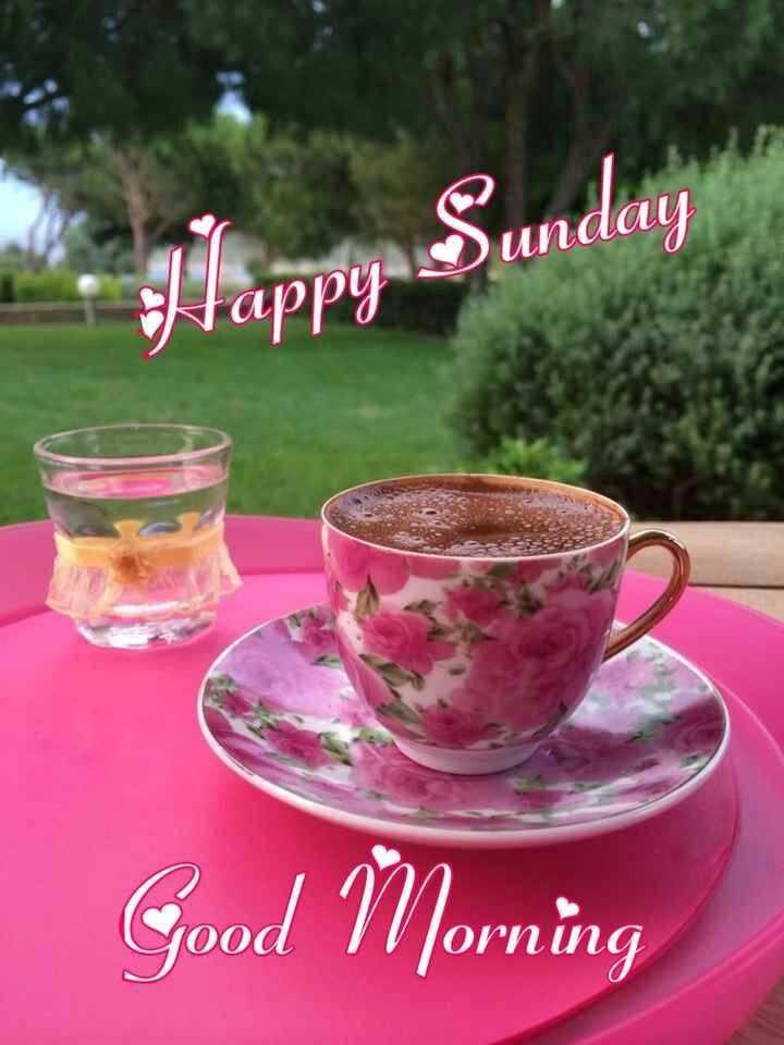 🌅శుభోదయం - * J ' appy Sunday Good Morning - ShareChat