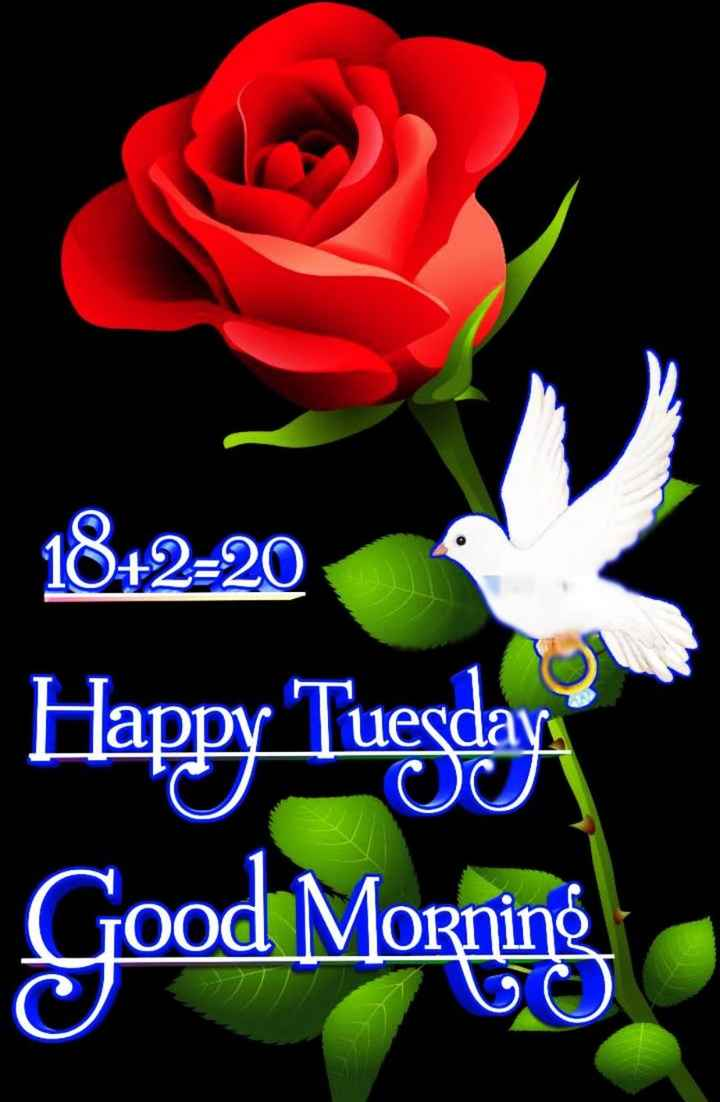 🌅శుభోదయం - leraar 1842220 Happy Tuesday Good Morning - ShareChat