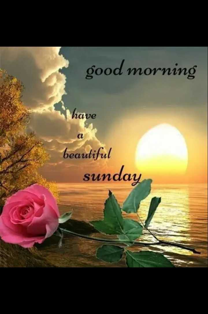 🌅శుభోదయం - good morning have beautiful sunday - ShareChat