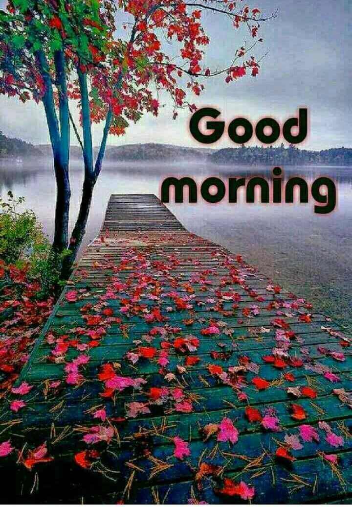 🌅శుభోదయం - Good morning USUZ - ShareChat