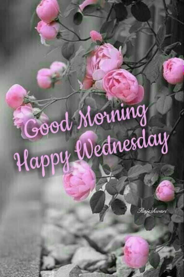 🌅శుభోదయం - Good Morning Happy Wednesday Rajeshwari - ShareChat