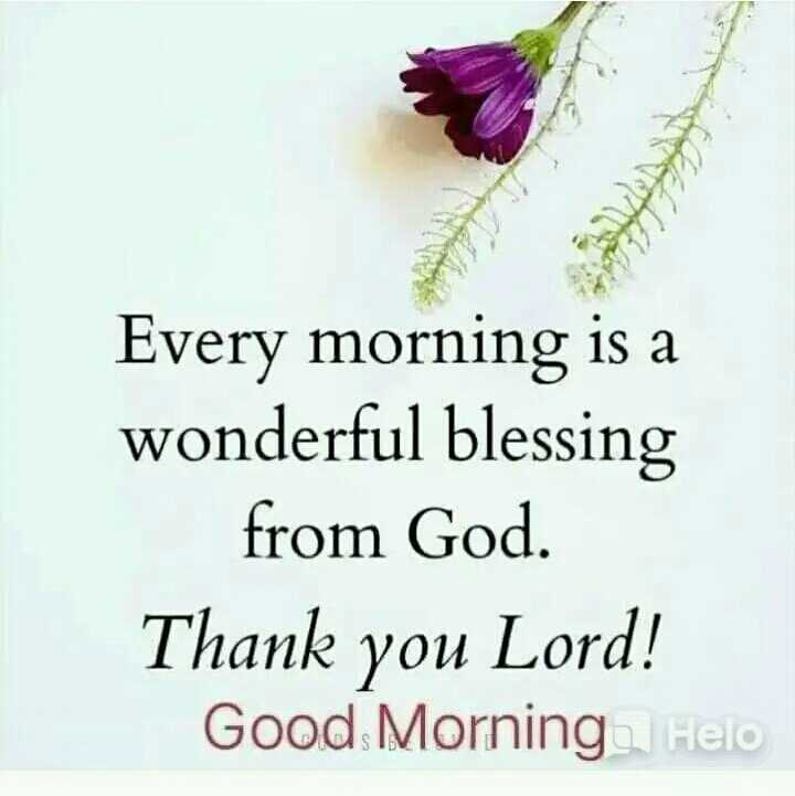 🌅శుభోదయం - Every morning is a wonderful blessing from God . Thank you Lord ! Good Morning - ShareChat