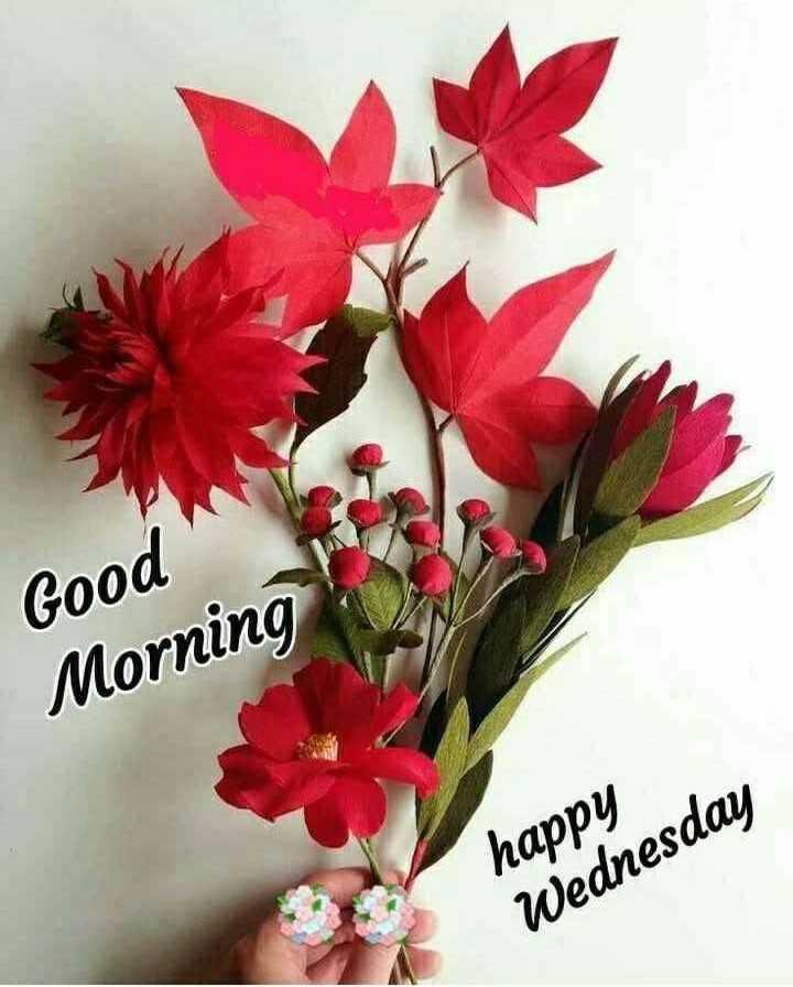 🌅శుభోదయం - Good Morning happy Wednesday - ShareChat