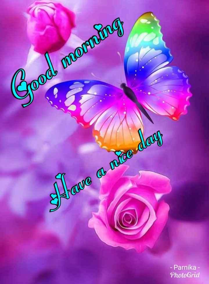 🌅శుభోదయం - Crood morning Have a nice day - Parnika PhotoGrid - ShareChat