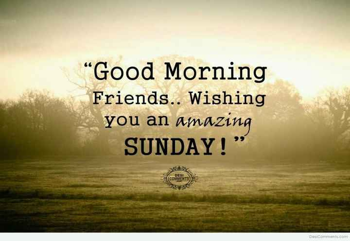 "🌅శుభోదయం - "" Good Morning Friends . . Wishing you an amazing SUNDAY ! "" ( COMENTS ) Desi Comments . com - ShareChat"