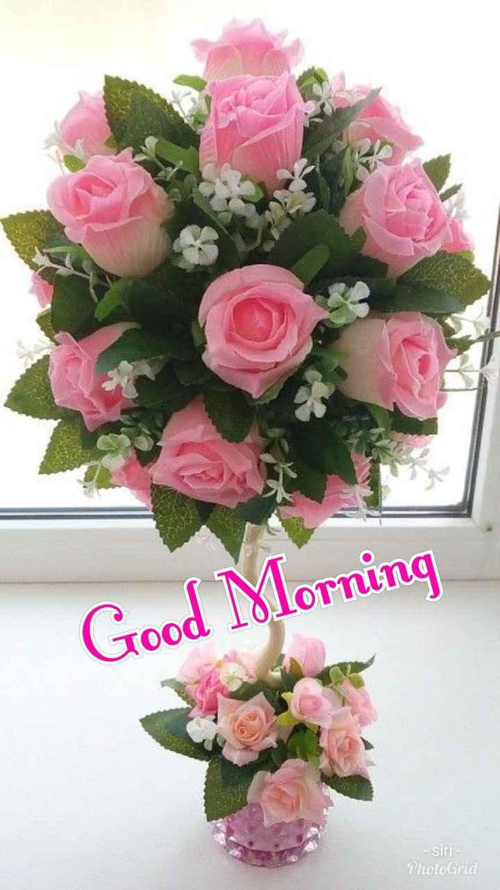 🌅శుభోదయం - Good Morning - siri - PhotoGrid - ShareChat